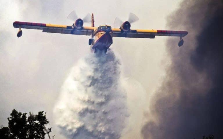 Este é o pior momento para pensar nos incêndios florestais